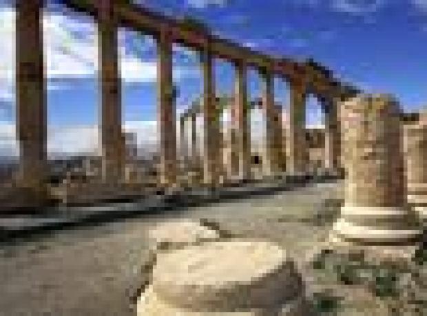 'IŞİD Palmyra'da 400 sivili öldürdü'