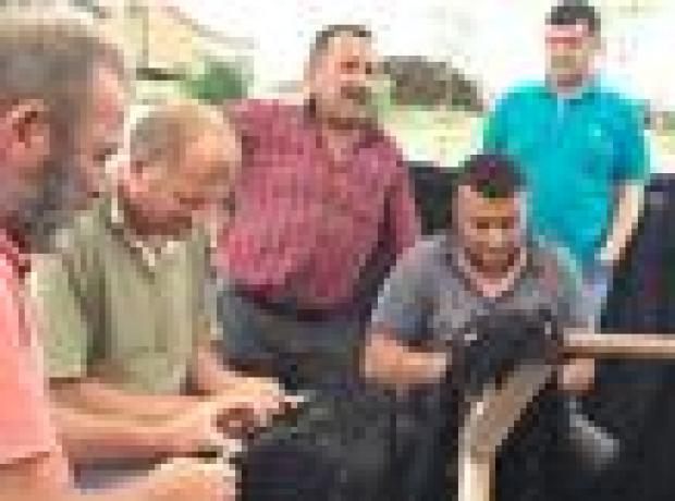 Giresunlu balıkçılardan AKP'ye övgü: 100 senede yapılamayanı 10 yılda yaptılar