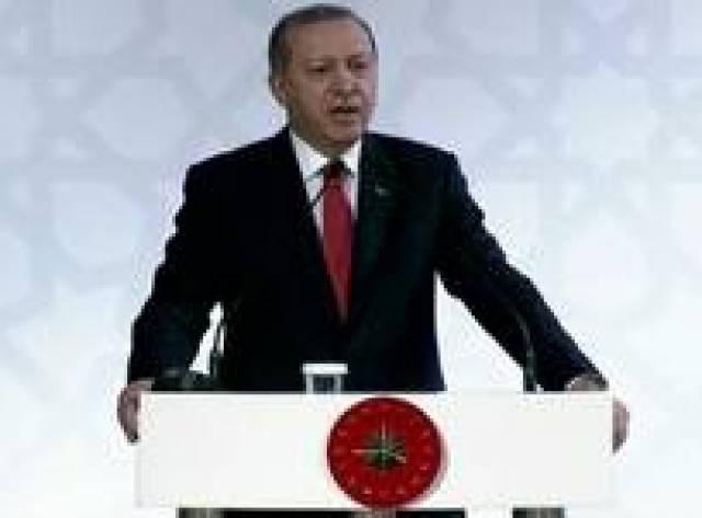 Erdoğan: AP'nin kararı bir kulağımızdan girer öbüründen çıkar