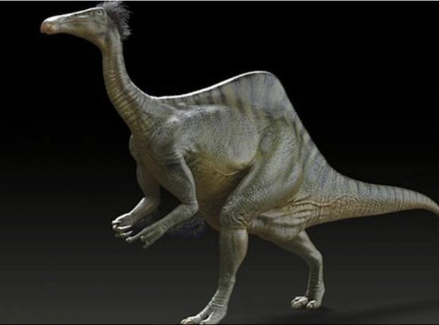 Uzun kollu dinozorun gizemi çözüldü
