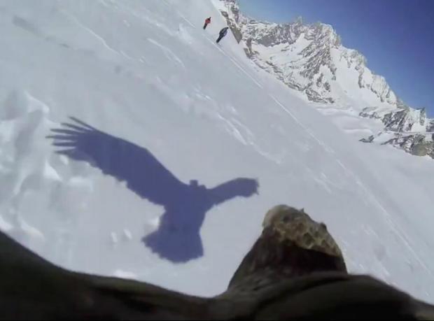 Bir kartalın gözünden 'kuşlar gibi özgür olmak'