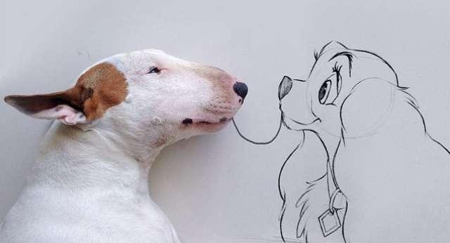 Köpeğiyle Harikalar Yaratıyor